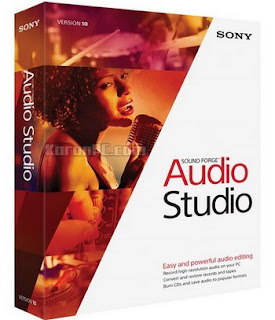 MAGIX Sound Forge Audio Studio 10.0 Build 319 Full